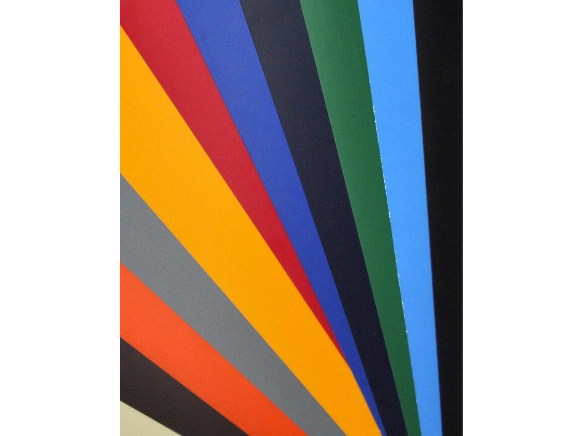Poli-Tape FlexClassic Nylon, Red, 10 m bedrucken, Art.-Nr. 011264002
